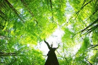 Natuurlijke_ventilatie_gratis.jpg