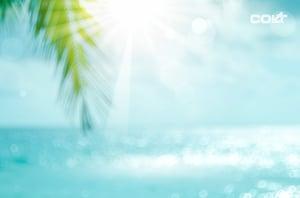 zomer_logo-607647752