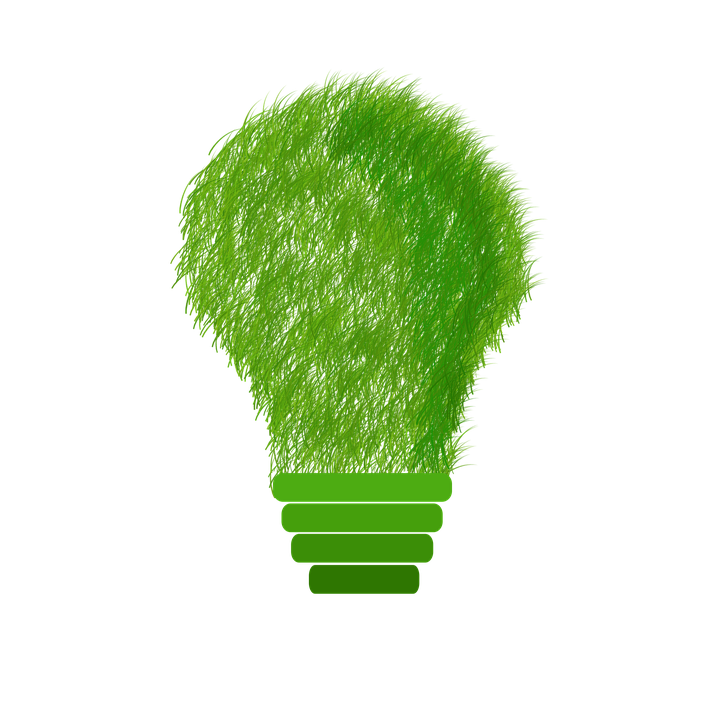 green-1966408_960_720.png